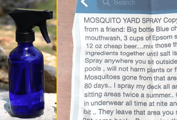 How To Make Your Own 3 Ingredient Mosquito Yard Spray That Really