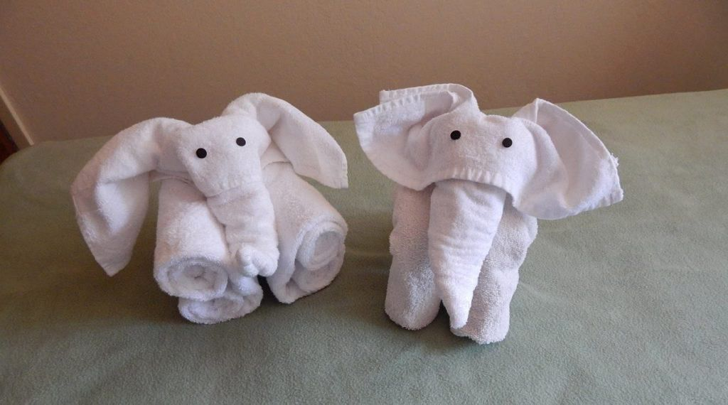 Towel Animal Folding Infographic: Ultimate Guide to Create Your ... | 570x1024
